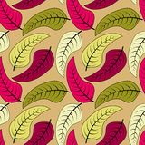 Seamless Pattern Leaves Autumn Royalty Free Stock Image