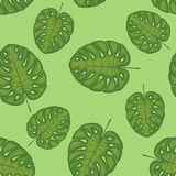Seamless pattern with leaves background vector illustration nature design floral summer plant textile fashion tropical. Seamless pattern with leaves background vector illustration
