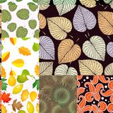 Seamless pattern with leaves background vector illustration nature design floral summer plant textile fashion tropical. Seamless pattern with leaves background stock illustration