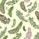 Seamless pattern with leaves and branches. Autumn seamless pattern with berries, leaves and branches vector Royalty Free Stock Photography