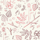 Seamless pattern with leaves, branches, berries, bumps, seeds Stock Photography