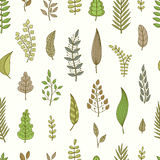 Seamless pattern with leaves. Stock Photo