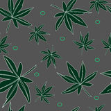 Seamless pattern of leaves Stock Photos