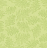 Seamless pattern with leaves on green Stock Image