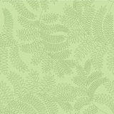 Seamless pattern with leaves on green background Stock Photos