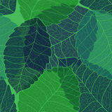 Seamless pattern of leaves royalty free illustration
