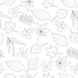 Seamless pattern of leaves. Seamless pattern of hand-drawn leaves Stock Photography