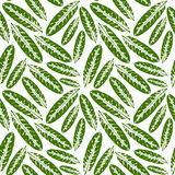 Seamless pattern with leaves imprints. Seamless handcrafted pattern with leaves imprints. Vector seamless pattern. Infinity background Royalty Free Stock Photos