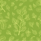 Seamless pattern with leaves on the light green color. Can be used as a background, wallpapers or any other design Stock Image