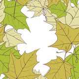 Seamless pattern with leaves of maple Royalty Free Stock Photography