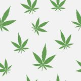 Seamless pattern of leaves of marijuana. Background with cannabis. Medical grass. Vector illustration royalty free illustration