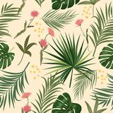 Seamless vector pattern of tropical leaves of palm tree and flow. Seamless pattern of leaves monstera, tropical leaves of palm tree and flowers. Vector Royalty Free Stock Photos