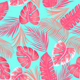 Seamless pattern of leaves monstera. Tropical leaves of palm tree. Vector background Royalty Free Stock Photo