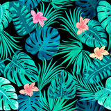 Seamless pattern of leaves monstera. Tropical leaves of palm tree. Vector background Stock Images