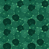 Seamless pattern with leaves of nasturtium Royalty Free Stock Photo
