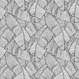 Seamless pattern with leaves of palm tree Stock Photos