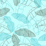 Seamless pattern with leaves of palm tree Royalty Free Stock Images