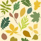 Seamless pattern with leaves silhouettes Royalty Free Stock Photo