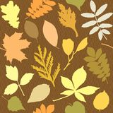 Seamless pattern with leaves silhouettes Stock Photo