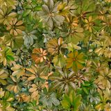 Seamless pattern, leaves, summer, green, heat, flora, wallpaper. Design: a seamless pattern of rounded green leaves of tropical plants. Designed for printing on stock image