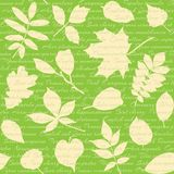 Seamless pattern with leaves and text Stock Image