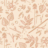 Seamless pattern with leaves, twigs, berries Stock Photography