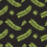 Seamless pattern with leaves vector illustration. Stock Photo