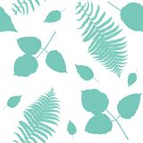 Seamless pattern with  leaves. On white background Stock Photo