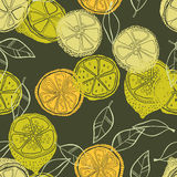 Seamless pattern with lemons, background of fruits. Vector illustration Royalty Free Stock Image