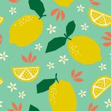 Seamless pattern with lemons and blossoms. Vector illustration Stock Photo