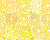 Seamless pattern with lemons. Stock Photography