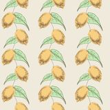 Seamless pattern with lemons. Seamless pattern of the depicted in graphic style by hand lemons with leaves Stock Illustration