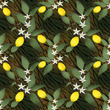 Seamless pattern with lemons, flower and leaves on tiger skin Royalty Free Stock Photos