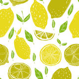Seamless pattern with lemons with leaves, background of fruits. Vector illustration. Seamless pattern with lemons with leaves, background of fruits Stock Images