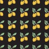 Seamless pattern of lemons. Seamless pattern with lemon on black background,  illustration Stock Image