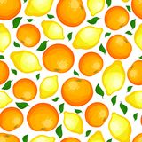 Seamless pattern from lemons and oranges. Royalty Free Stock Images