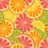 Seamless pattern with lemons, oranges and grapefr Stock Image