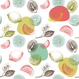 Seamless pattern with lemons, oranges and mandarins. Stock Images