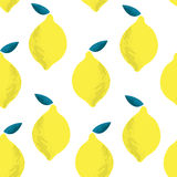 Seamless pattern with lemons on the white background. Vector illustration. Hand drawn background Stock Images