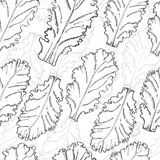 Seamless pattern with lettuce Stock Photo