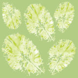 Seamless pattern with lettuce. Seamless pattern with watercolor lettuce Royalty Free Stock Photography