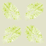 Seamless pattern with lettuce. Seamless pattern with watercolor lettuce Royalty Free Stock Photo