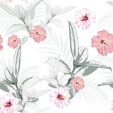 Seamless pattern, light vintage colors Ficus Elastica leaves and hibiscus flowers on white background. Vector illustration Stock Photos