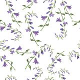 Bellflower seamless pattern. Watercolor illustration. vector illustration