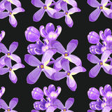 Seamless pattern Lilac branch flowers blooming spring. Vector il Royalty Free Stock Photos