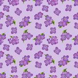 Seamless pattern of lilac flowers Royalty Free Stock Images