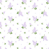 Seamless pattern with lilac flowers. Vector illust Royalty Free Stock Photos