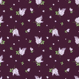 Seamless pattern with lilac flowers. Vector illustration. Royalty Free Stock Images