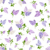 Seamless pattern with lilac flowers. Vector illustration. Stock Photography