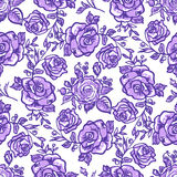 Seamless pattern lilac rose Royalty Free Stock Photography